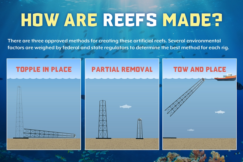 how_reefs_are_made