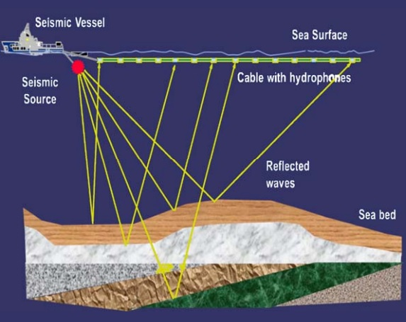 seismic_diagram